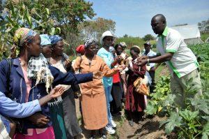 Feminization of Agriculture